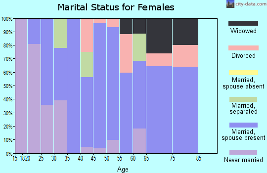 Zip code 14030 marital status for females
