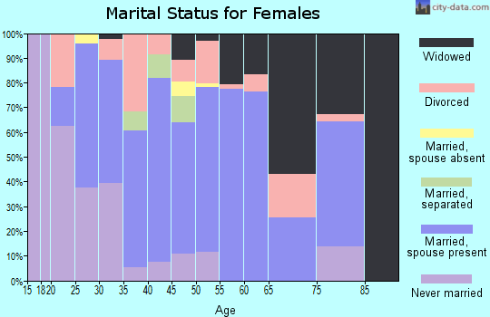 Zip code 14042 marital status for females