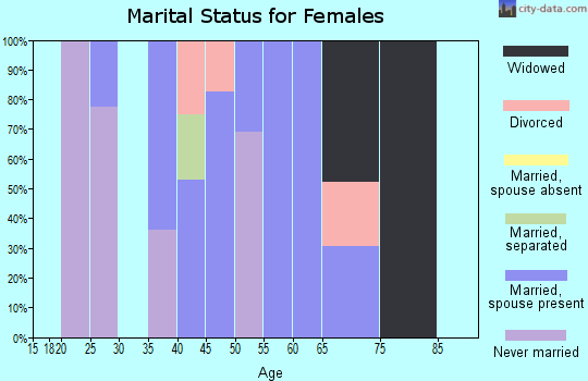 Zip code 14728 marital status for females