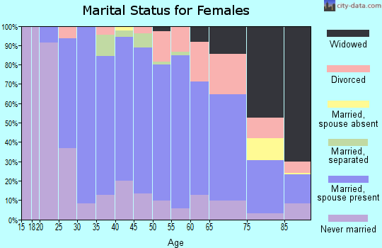 Zip code 15243 marital status for females