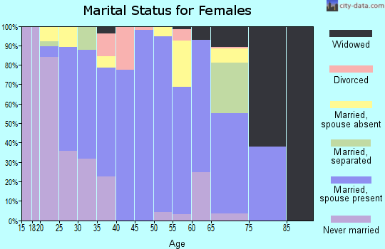 Zip code 15559 marital status for females