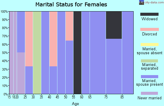 Zip code 15560 marital status for females