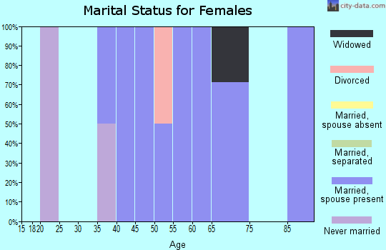 Zip code 15784 marital status for females
