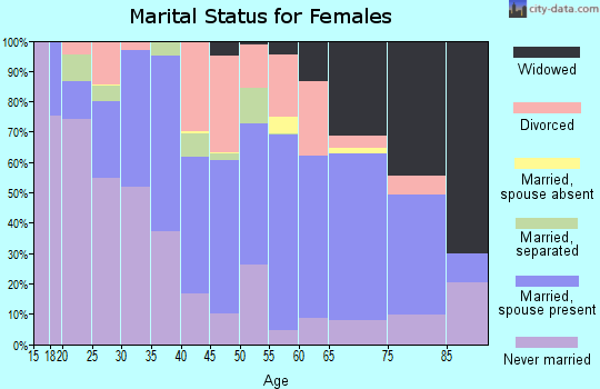 Zip code 15906 marital status for females