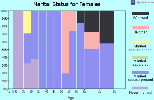 Zip code 15952 marital status for females