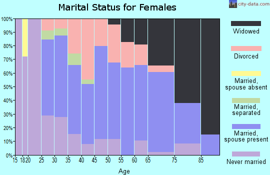 Zip code 15954 marital status for females