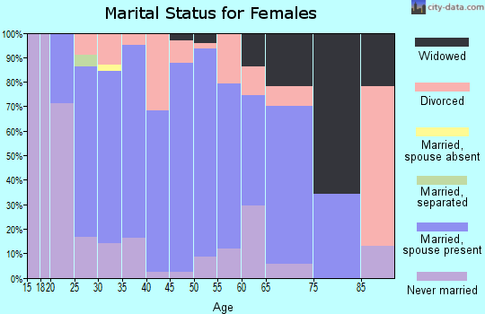 Zip code 15956 marital status for females