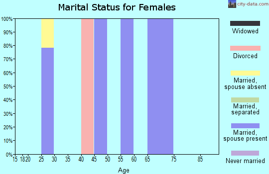 Zip code 16343 marital status for females