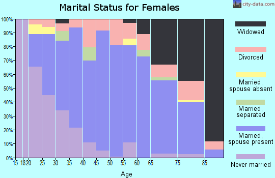 Zip code 16673 marital status for females