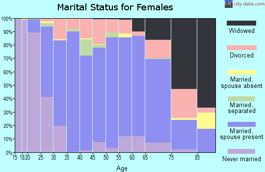 Zip code 17019 marital status for females