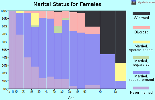 Zip code 17023 marital status for females