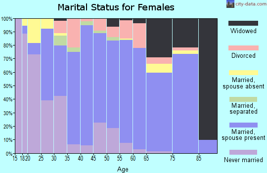 Zip code 17032 marital status for females