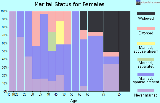 Zip code 17063 marital status for females
