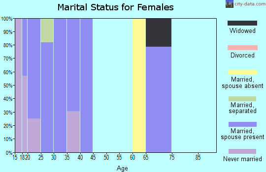 Zip code 17220 marital status for females