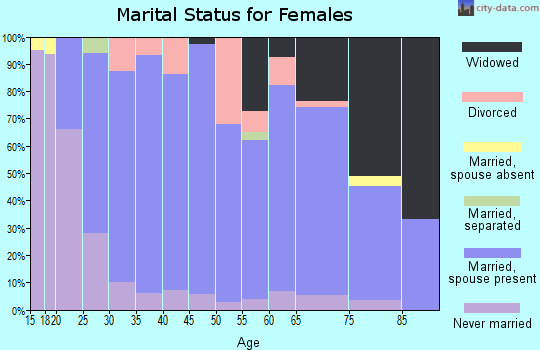 Zip code 17240 marital status for females