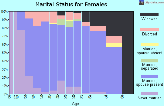Zip code 17301 marital status for females
