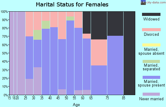 Zip code 17302 marital status for females