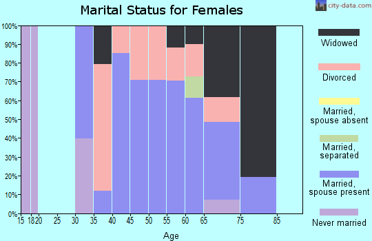 Zip code 17309 marital status for females