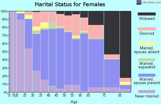 Zip code 17325 marital status for females