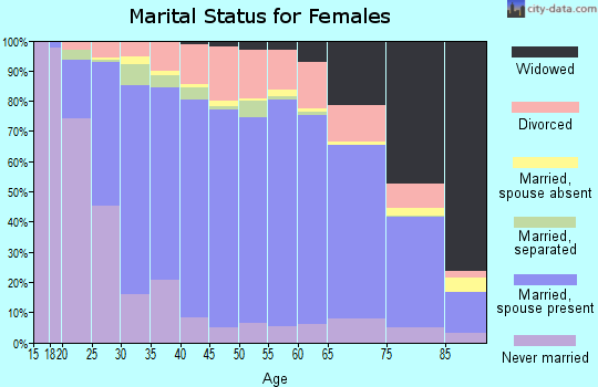 Zip code 17331 marital status for females