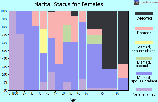 Zip code 17344 marital status for females