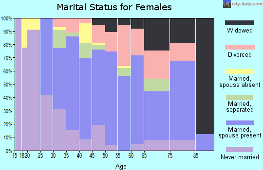 Zip code 17345 marital status for females