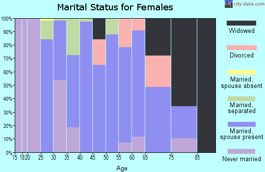 Zip code 17353 marital status for females