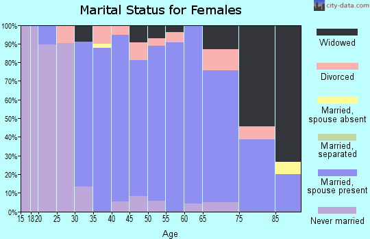 Zip code 17407 marital status for females