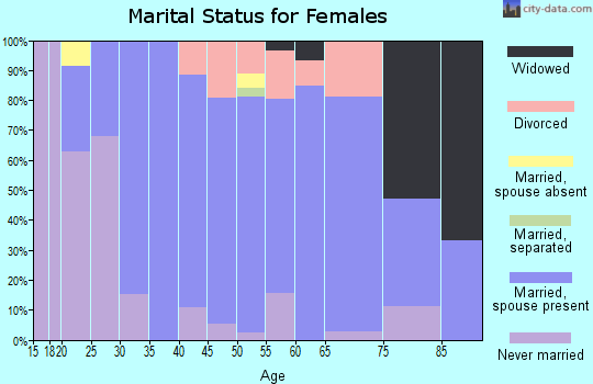 Zip code 17538 marital status for females