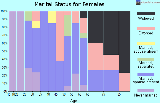 Zip code 17881 marital status for females