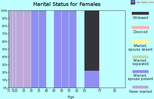 Zip code 17944 marital status for females