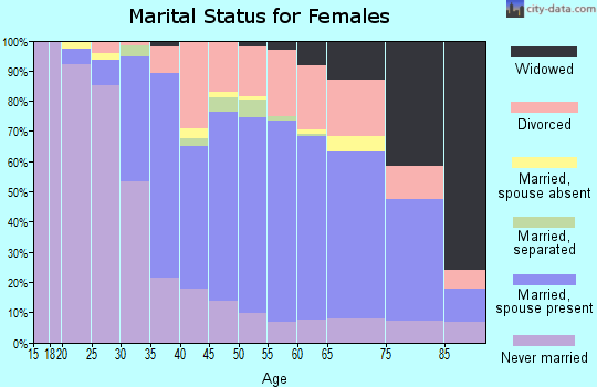 Zip code 19027 marital status for females