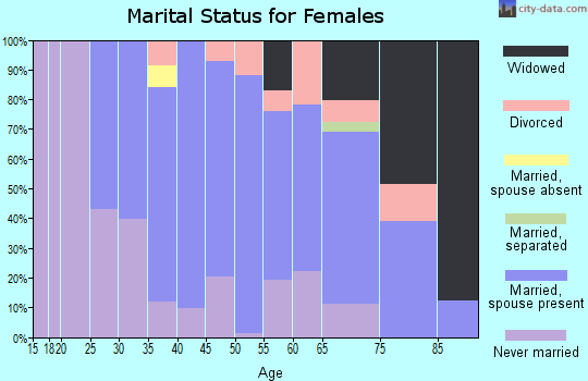Zip code 19081 marital status for females