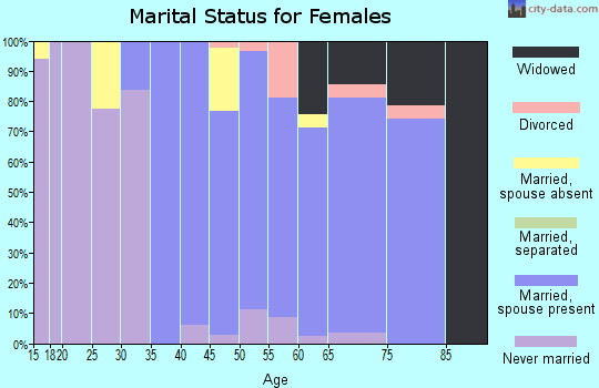 Zip code 19085 marital status for females