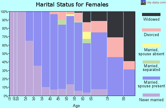 Zip code 19312 marital status for females