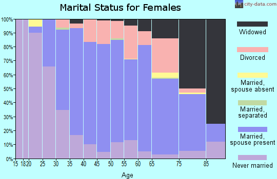 Zip code 19462 marital status for females