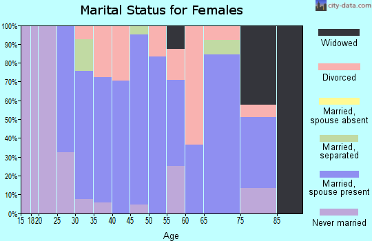 Zip code 19503 marital status for females
