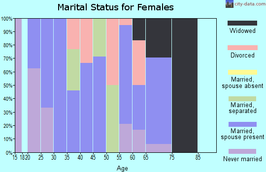 Zip code 19559 marital status for females