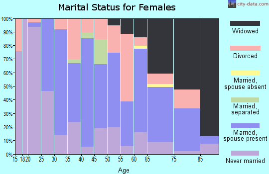 Zip code 19560 marital status for females