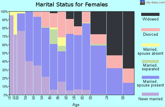 Zip code 19943 marital status for females