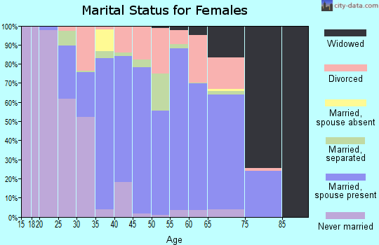 Zip code 19950 marital status for females