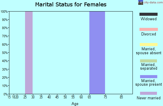 Zip code 20118 marital status for females