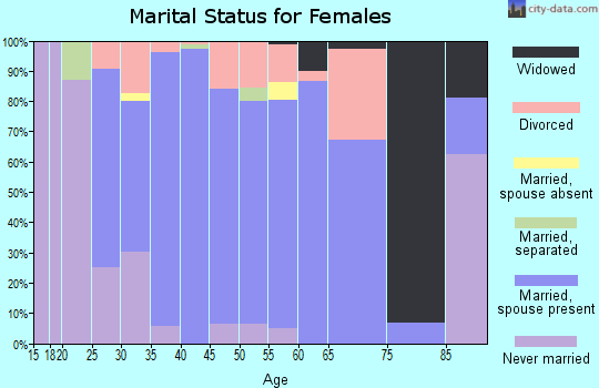 Zip code 20141 marital status for females