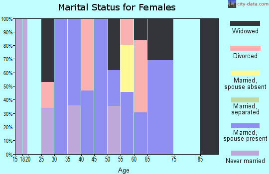 Zip code 20143 marital status for females