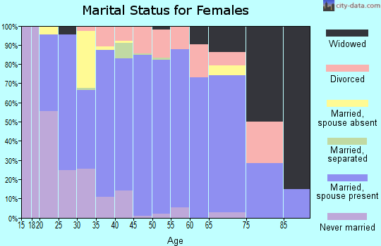 Zip code 20180 marital status for females