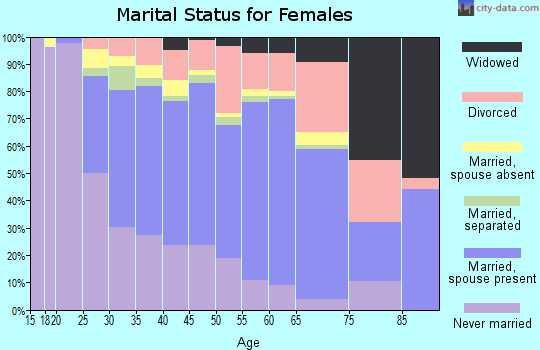 Zip code 20191 marital status for females