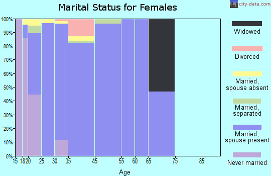 Zip code 20336 marital status for females