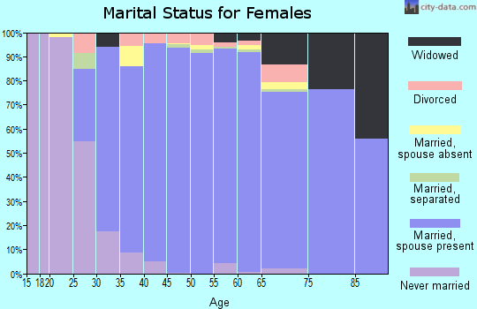 Zip code 22039 marital status for females