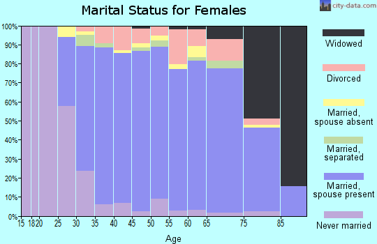 Zip code 22182 marital status for females