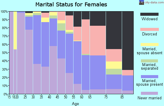 Zip code 22203 marital status for females